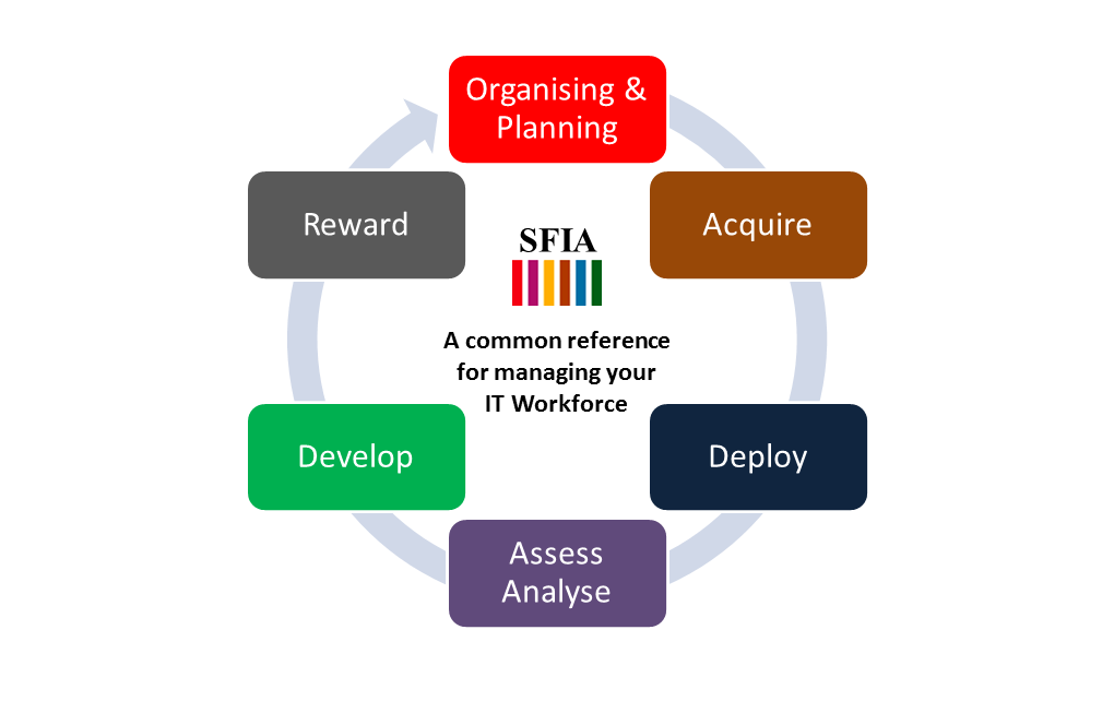 SFIA lifecycle view