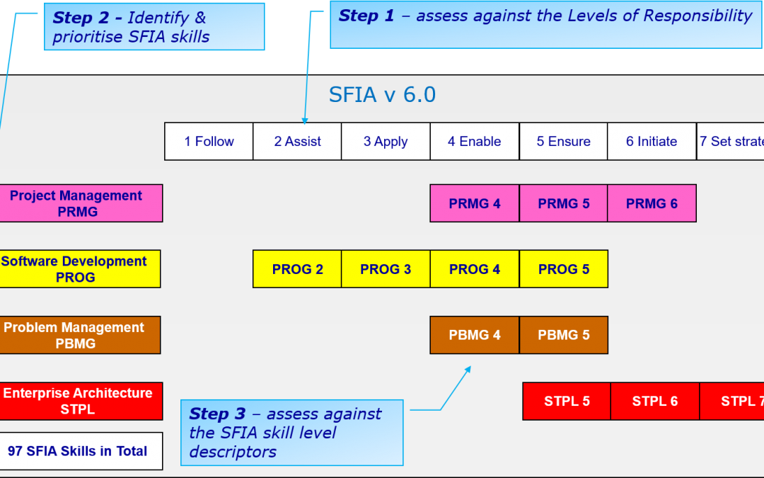 Self Assessment of SFIA skills
